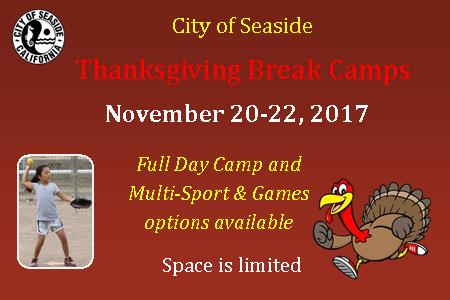 Thanksgiving Camp Mini image