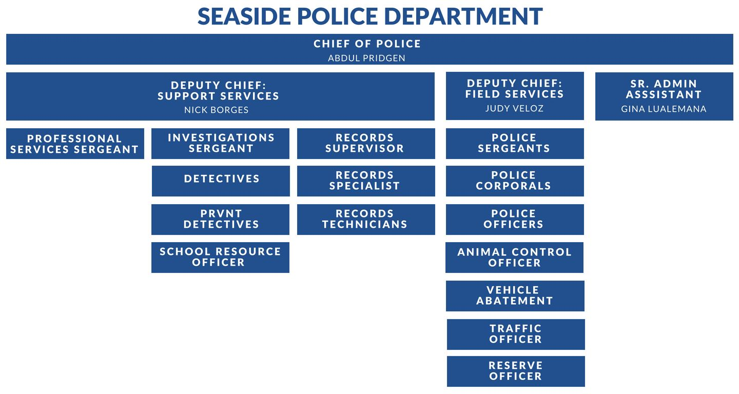Seaside PD Organization Chart