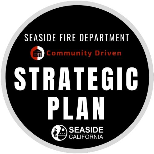 FD Strategic Plan Logo