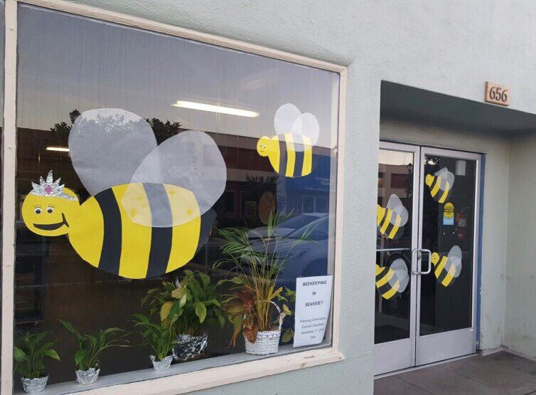 Bees in Window