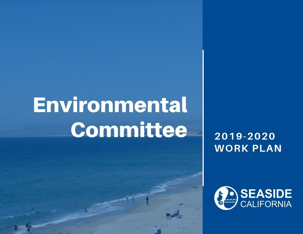 Cover of 19-20 Environmental Committee Work Plan Opens in new window