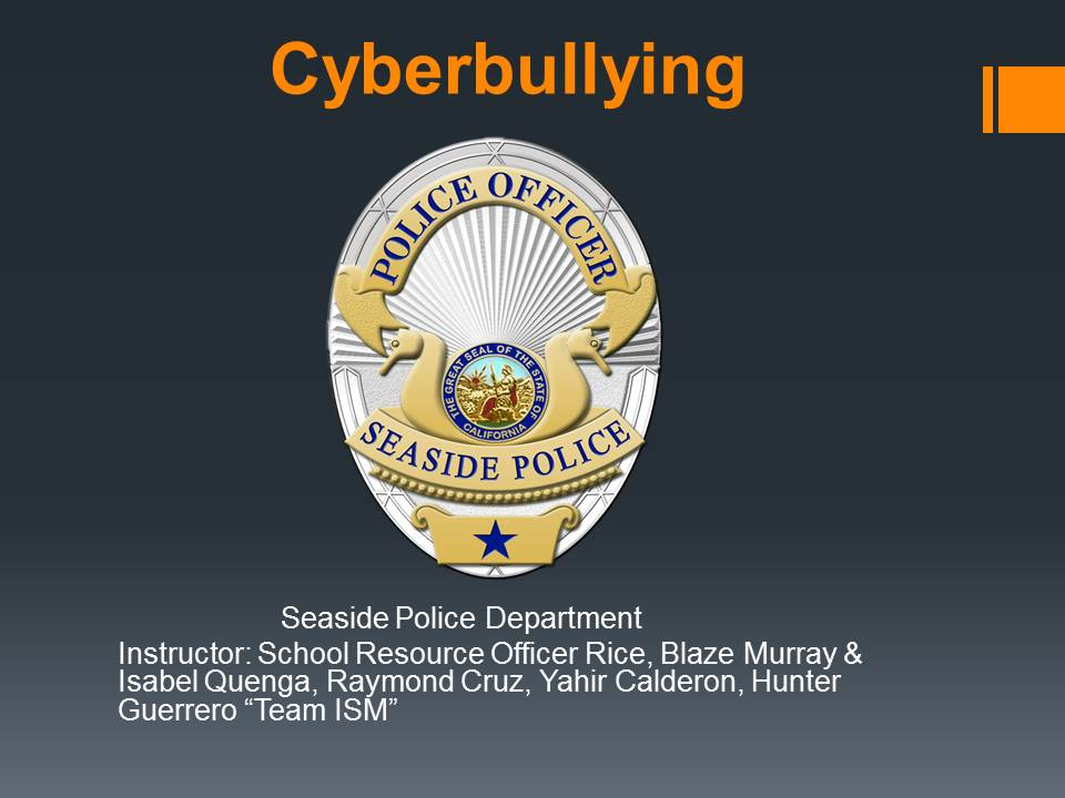 Powerpoint for Cyberbullying Opens in new window