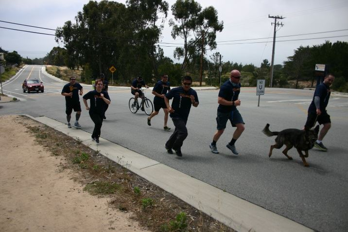 Officers and canine running up a hill